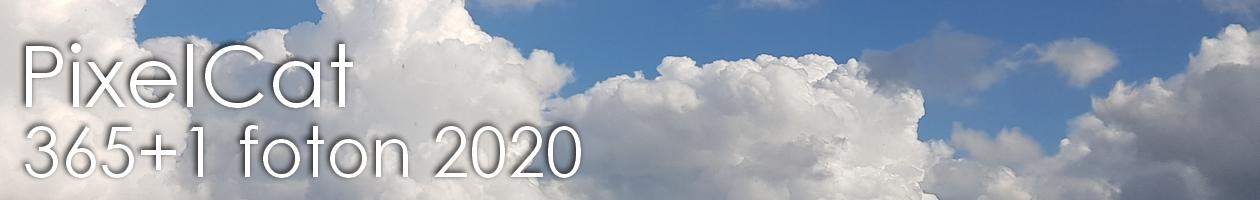 PixelCat – Fotoutmaningen 2020